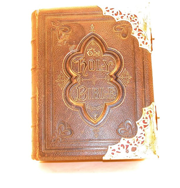 1891ca National Illustrated Bible
